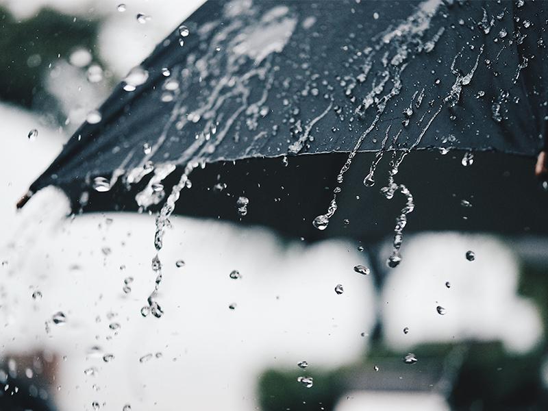 Ilustrasi hujan. Medcom.id